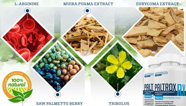 Paltrox RX Ingredients