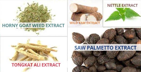 Adnvcd Test Ingredients