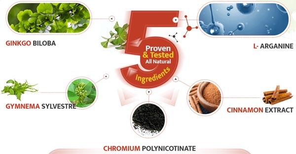 GlucoNeuro Ingredients