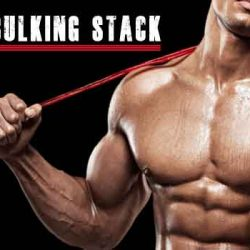Bulking Stack For Bodybuilding - Choose The Right & Best One