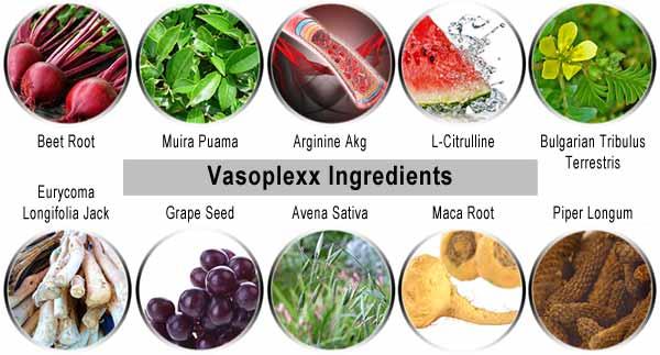 Vasoplexx Ingredients