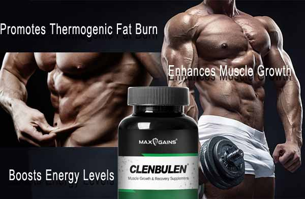 Clenbulen Benefits
